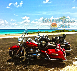 cozumel harley davidson rental for renting a harley in cozumel mexico