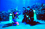 discover scuba cozumel to learn how to scuba dive in cozumel mexico